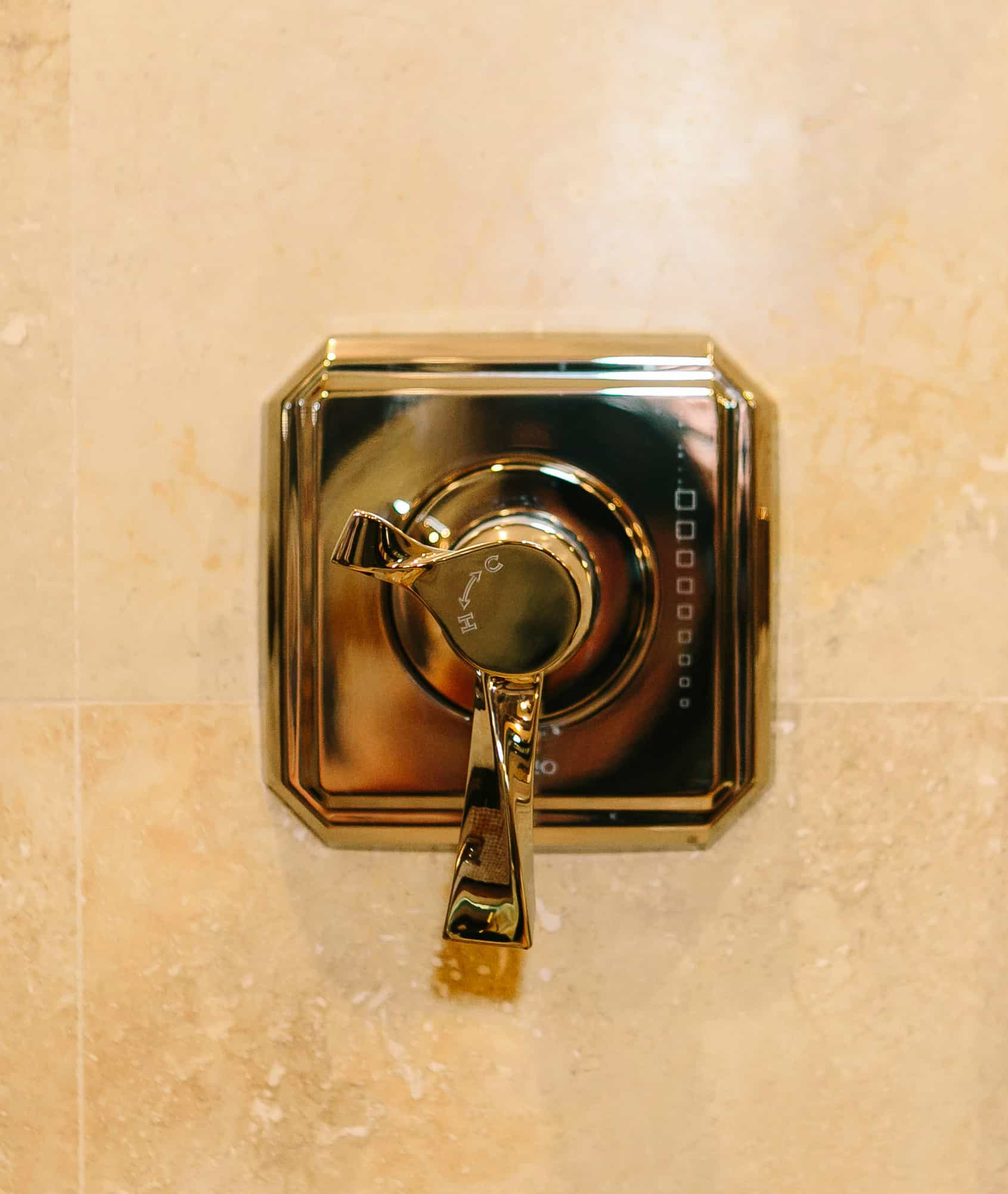 Bathroom innovations you just might need kbf design gallery - Shower controls ...